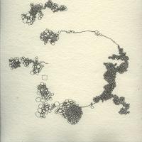bryophyte 9
