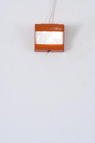 bryophyte lumineux (orange)